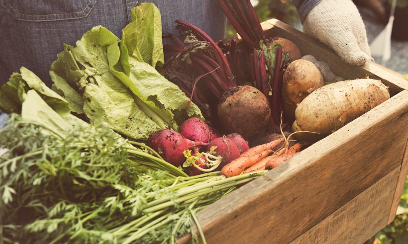 A Quick Drill Down on Organics