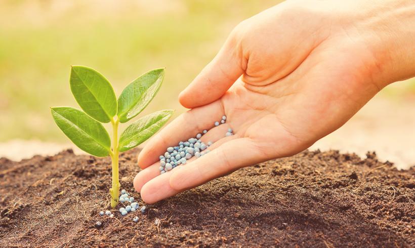 Plant Nutrition Management