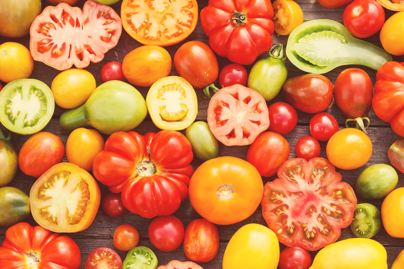 The Quest for Flavorful Tomatoes