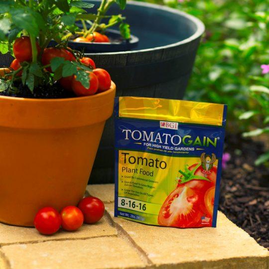 Tomato & Vegetable Plant Food