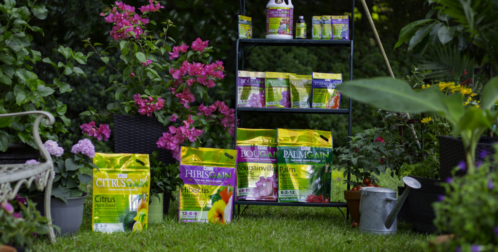 Bgi Fertilizers Bougainvillea Fertilizer Roses Hibiscus Palm