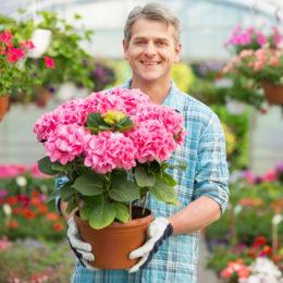 blooming-buddies-med
