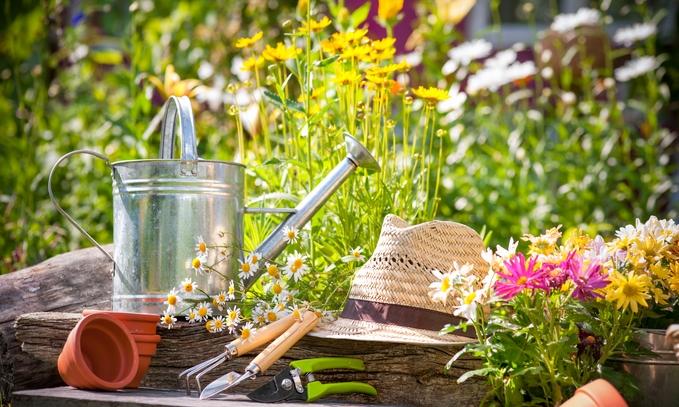 A Critical Key to Your Garden's Success