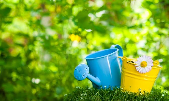 Gardening FAQ's – Getting Ready for Summer