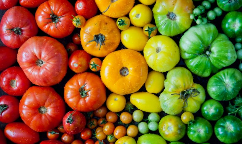 Selecting The Right Tomato Food