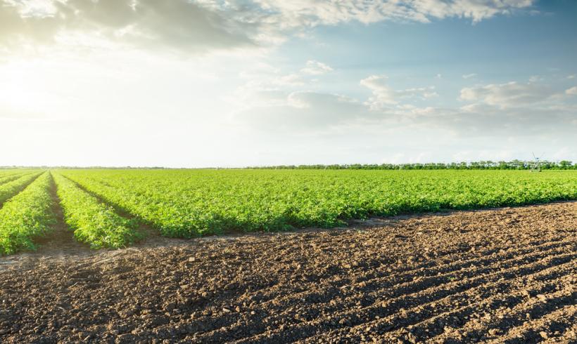 How to Read Fertilizer Labels & Myth-Busting Organic Farming